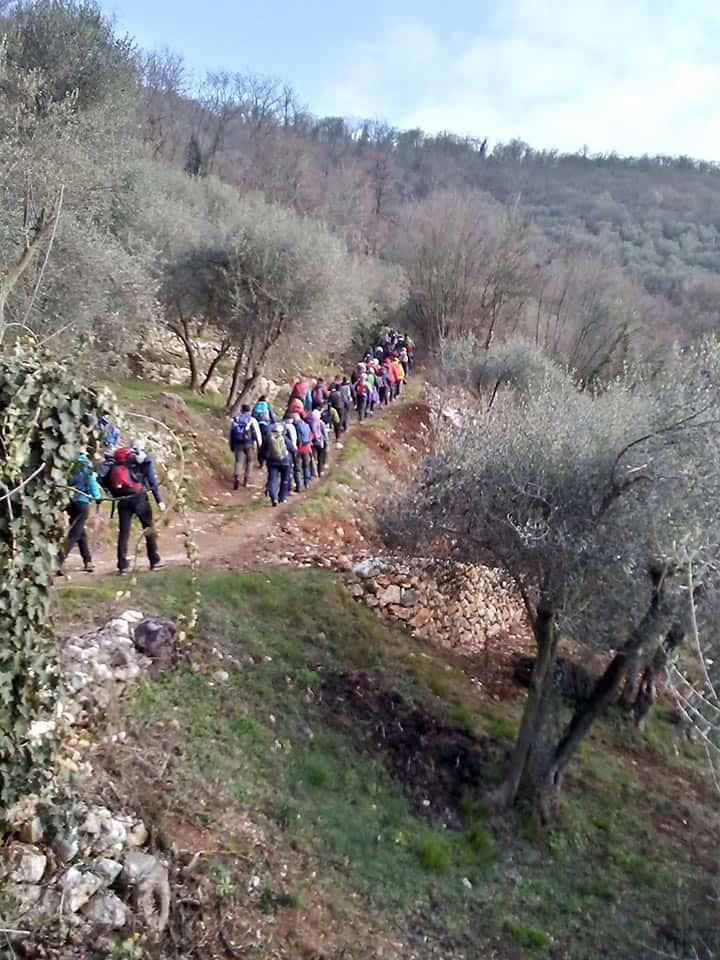 Colli Berici 11-02-2018
