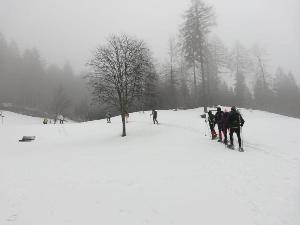 Dolomiti di brenta 10 Febbraio 2019